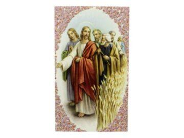 Estampita Jesus del Buen Camino