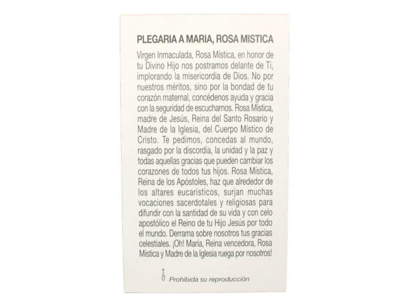 Estampita Virgen Maria Rosa Mistica oracion